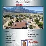 Carson Valley Real Estate