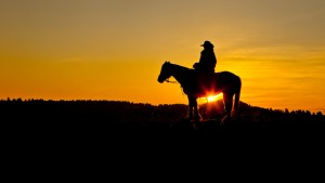 cowboy and sunset